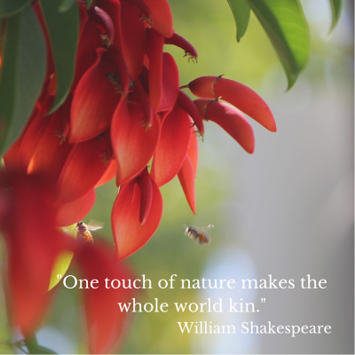 %22One touch of nature makes the whole world kin.%22